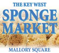 photo of sponge market