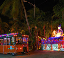 Old Town Trolley's Holiday Lights & Sights Tour